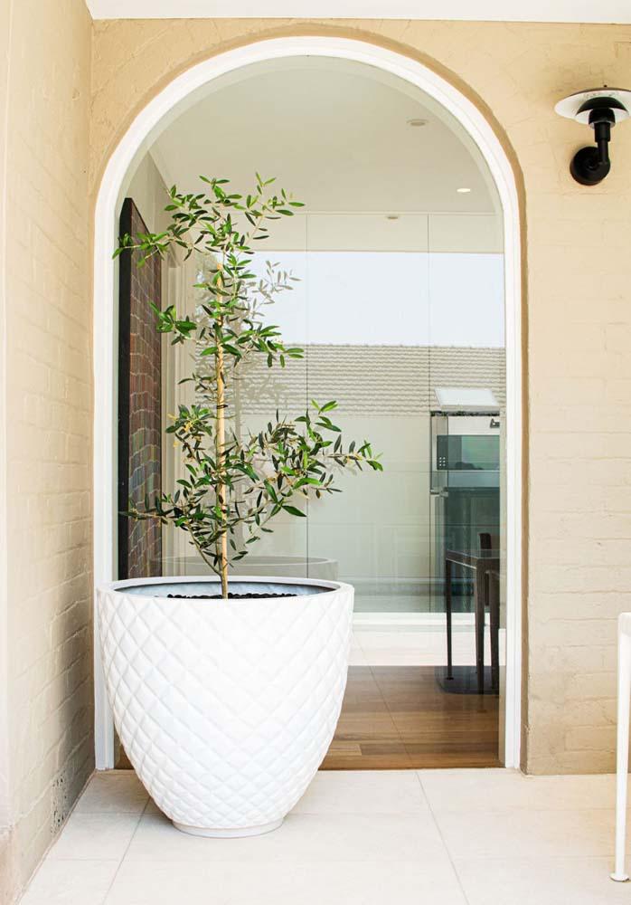 tavira limestone plant pot
