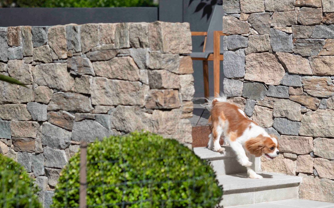 cotswold wall cladding garden puppy